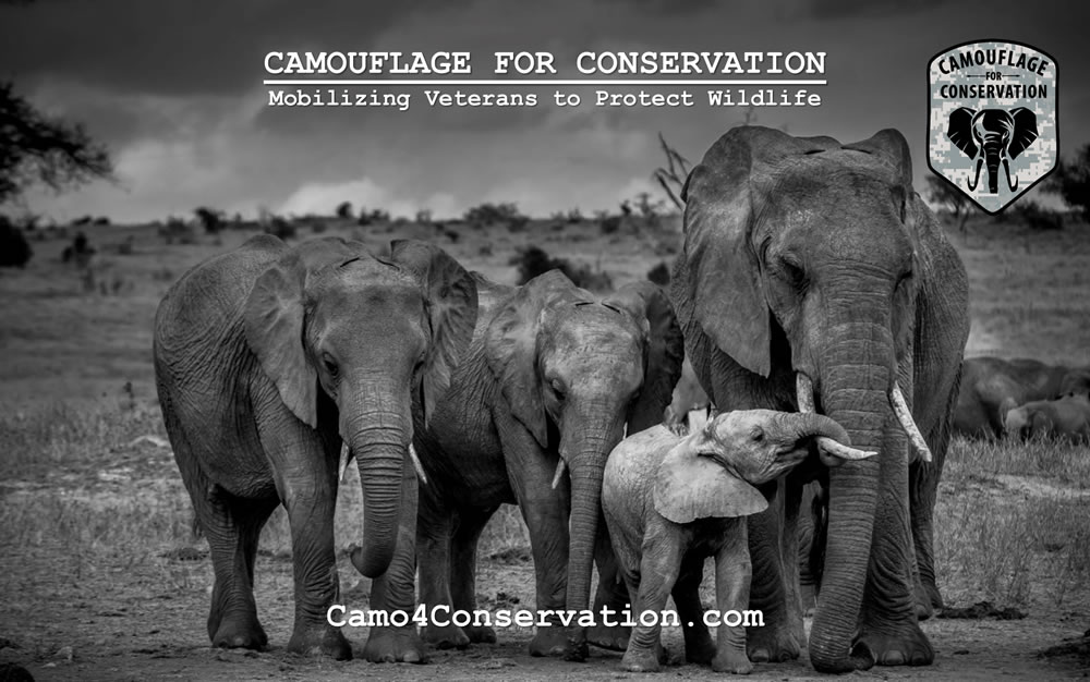 Camo4Conservation