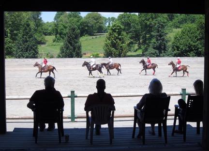 Seager's Polo Farm; Photo by Darlene Shields